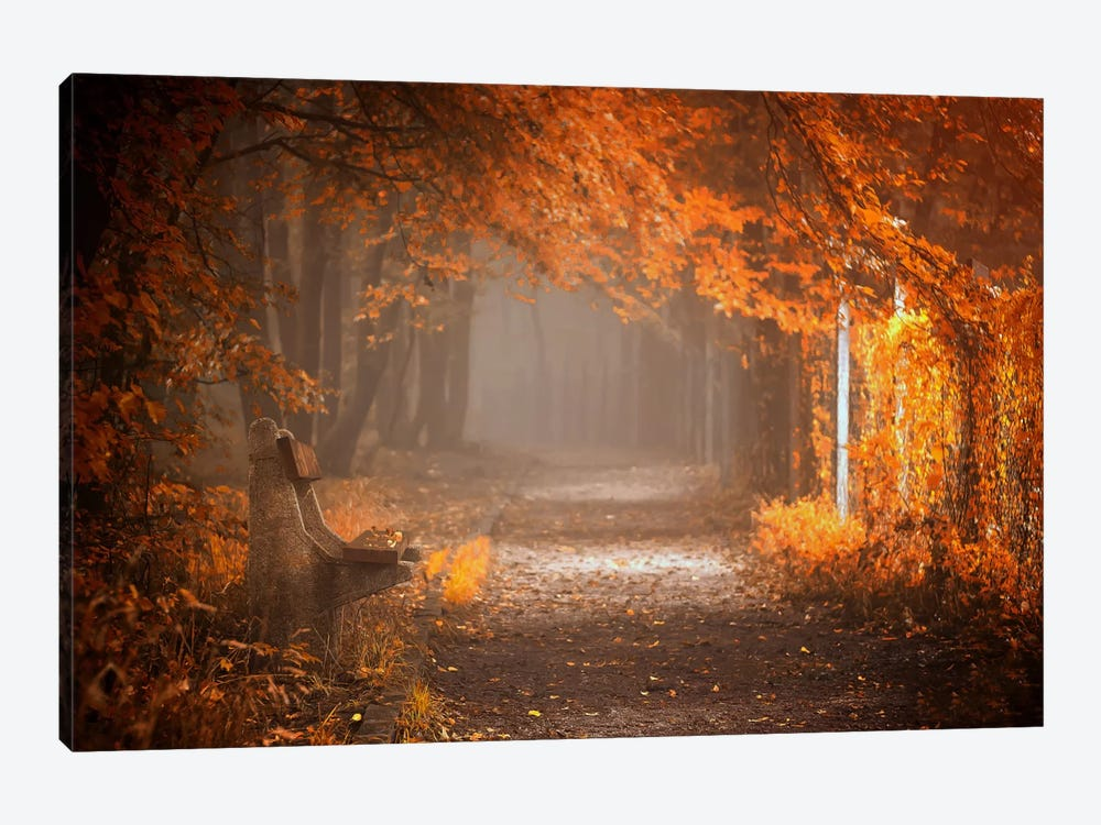 Waiting To Fall by Ildiko Neer 1-piece Canvas Artwork