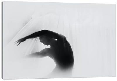 The Dance Of Silence Canvas Art Print