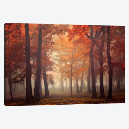 Feel Canvas Print #OXM332} by Ildiko Neer Canvas Artwork