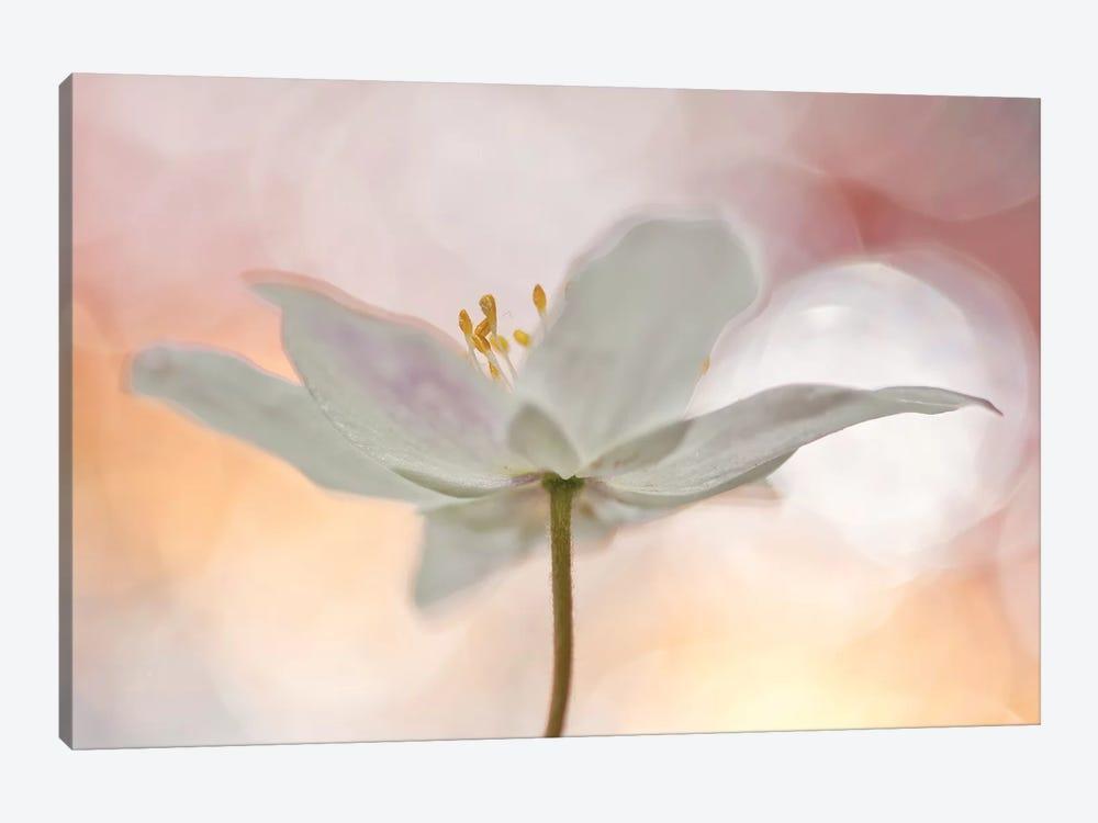 A Sip Of Art by Bee Thalin 1-piece Canvas Art Print