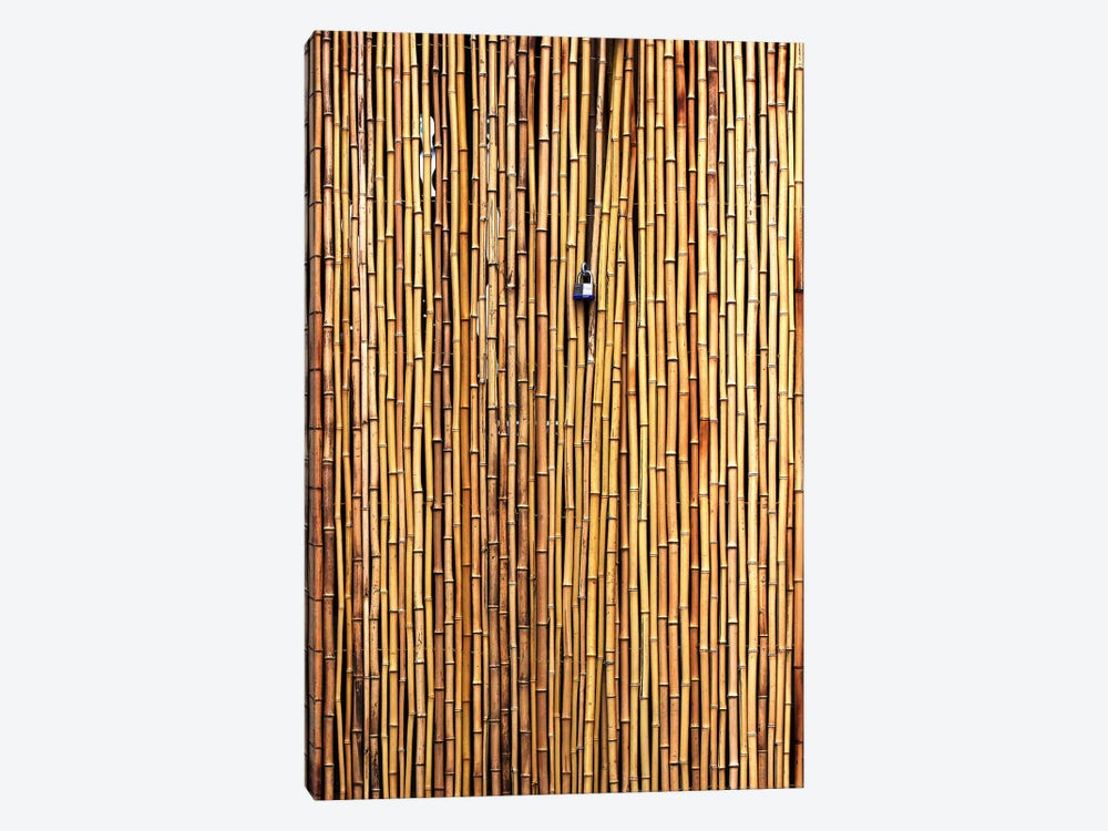 The Locked Door by Jian Wang 1-piece Canvas Print