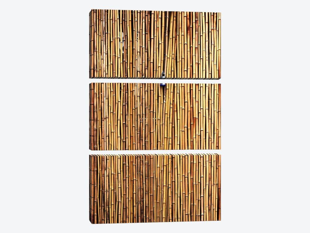 The Locked Door by Jian Wang 3-piece Canvas Art Print