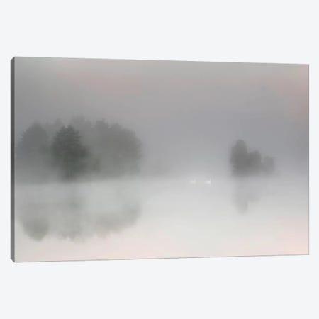 Misty Morning Canvas Print #OXM3346} by Bjorn Emanuelson Art Print