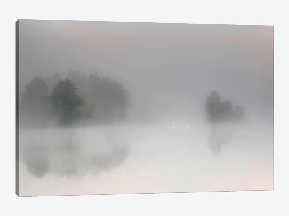 Misty Morning by Bjorn Emanuelson 1-piece Canvas Art Print