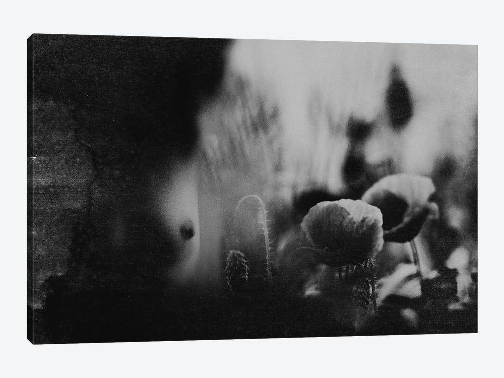 Untitled II by Bogdan Bousca 1-piece Canvas Art
