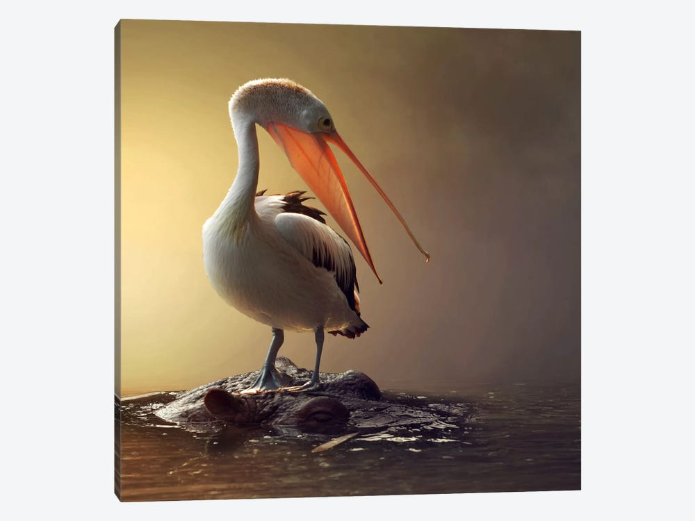 Comfortable by Hendra Yudhiarto M 1-piece Canvas Artwork