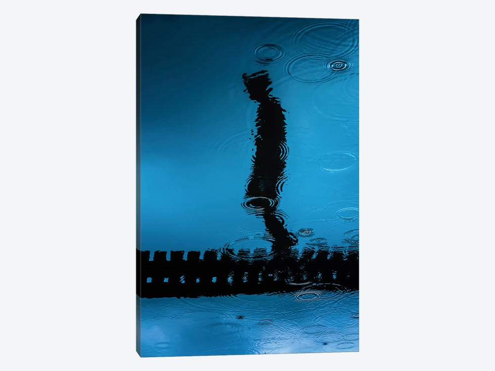 Melancholia 1-piece Canvas Art