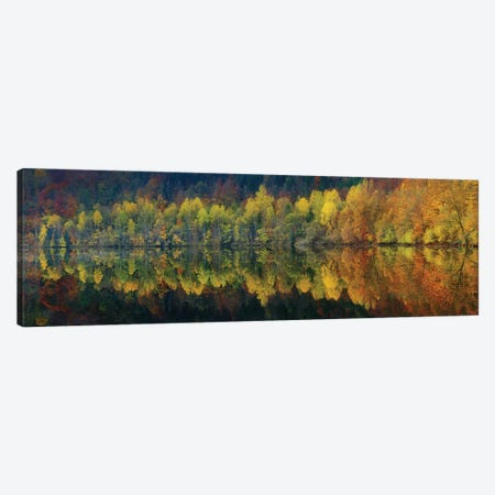 Autumnal Silence Canvas Print #OXM3370} by Burger Jochen Canvas Print