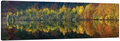 Autumnal Silence Canvas Art Print