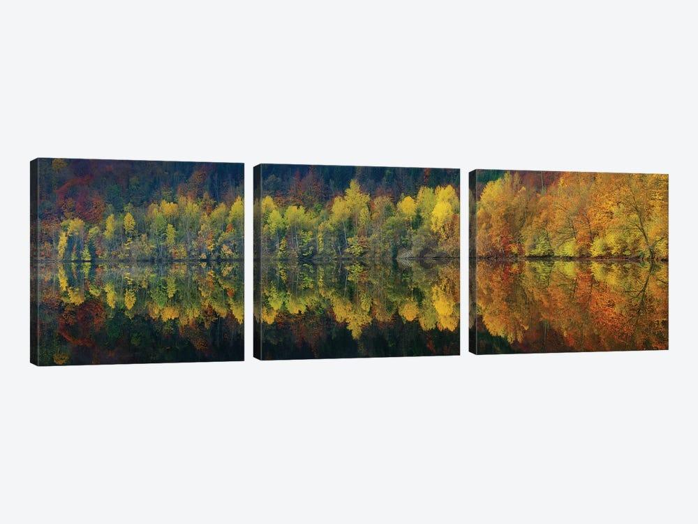Autumnal Silence by Burger Jochen 3-piece Canvas Wall Art