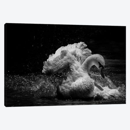 In Motion 3-Piece Canvas #OXM3375} by C.S.Tjandra Canvas Art