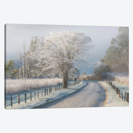 A Frosty Morning Canvas Print #OXM3385} by Chris Moore Canvas Print