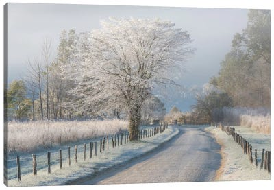 A Frosty Morning Canvas Art Print