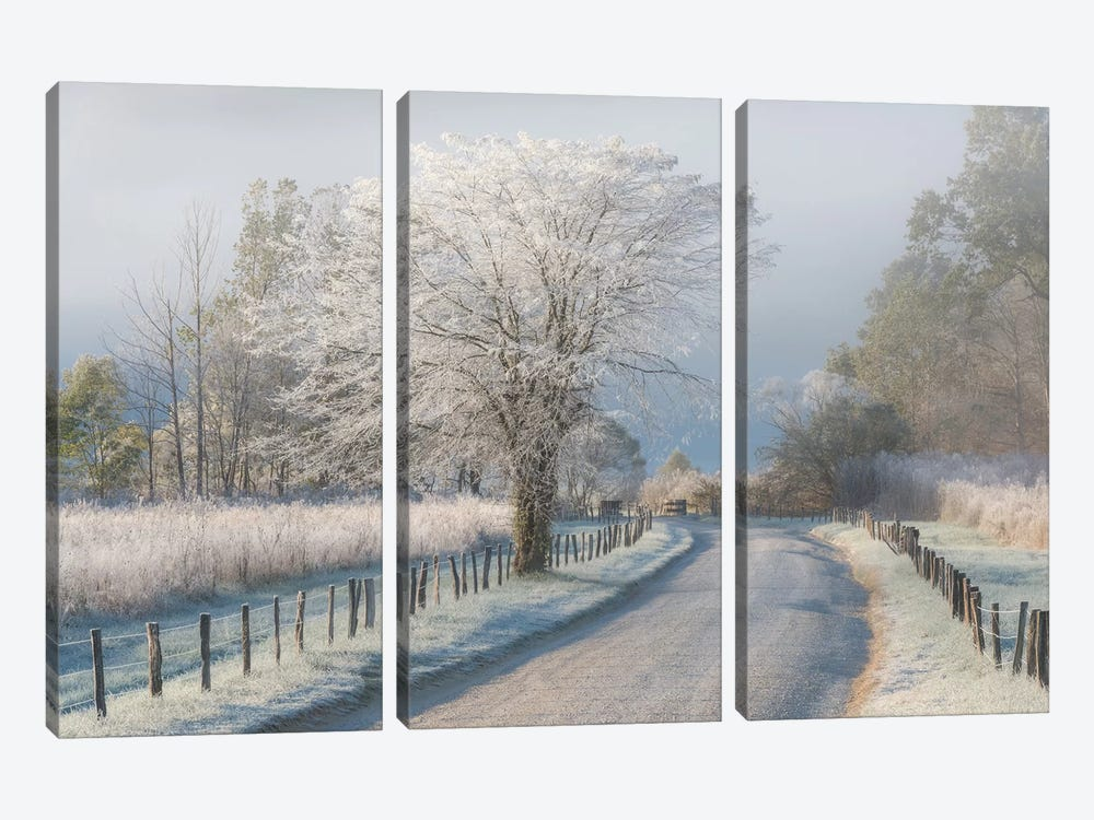 A Frosty Morning by Chris Moore 3-piece Canvas Wall Art