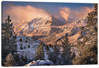 Mountain Light Canvas Art Print