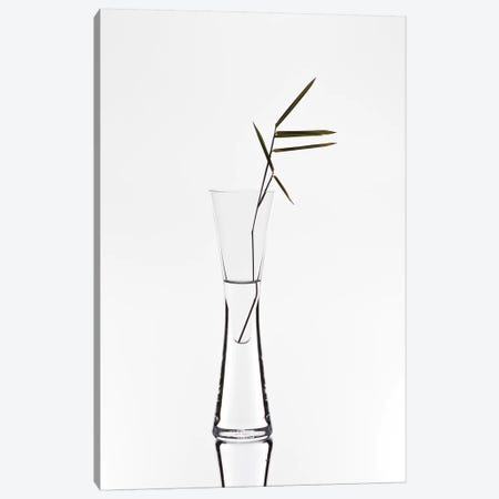 Bamboo Canvas Print #OXM3387} by Christian Pabst Art Print