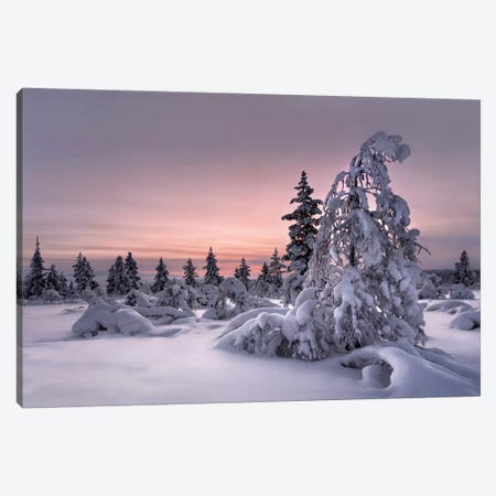 Lapland - Winter Wonderland Canvas Print #OXM3389} by Christian Schweiger Canvas Artwork