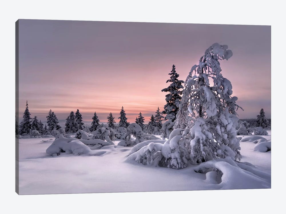 Lapland - Winter Wonderland by Christian Schweiger 1-piece Canvas Artwork