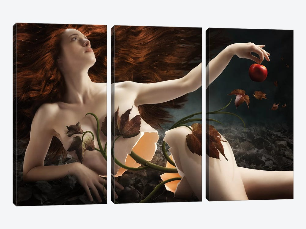 Eve by Christophe Kiciak 3-piece Canvas Print