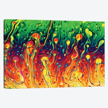 Soap Opera Canvas Print #OXM3396} by Christophe Kiciak Canvas Artwork