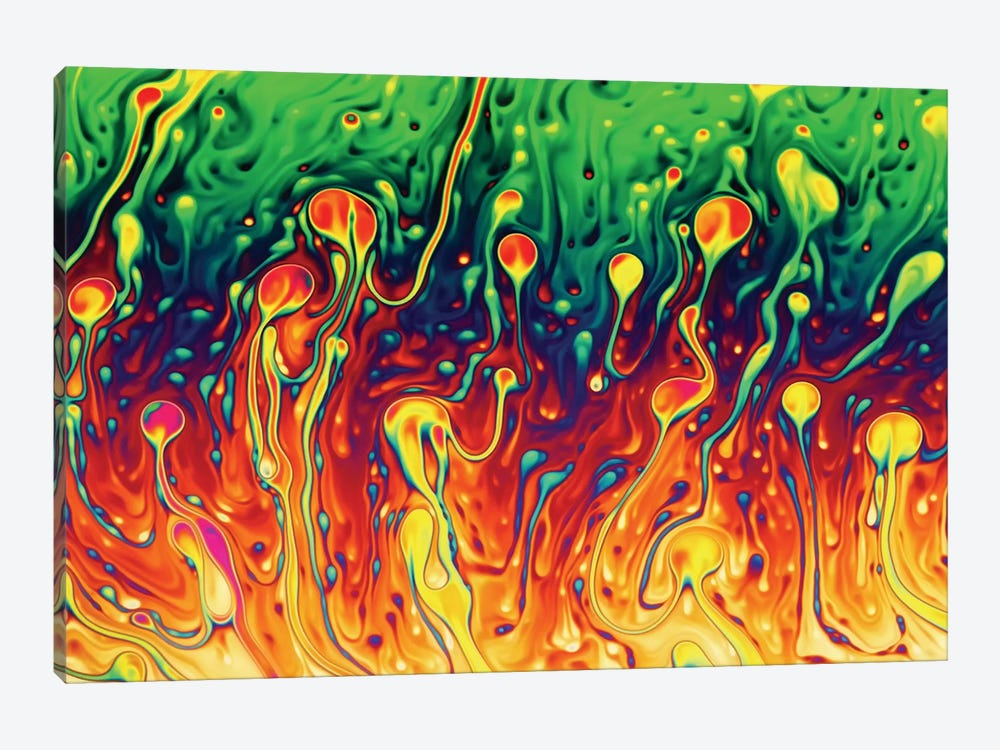 Soap Opera by Christophe Kiciak 1-piece Canvas Artwork