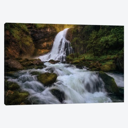 Spring Flood Canvas Print #OXM3407} by Daniel F. Canvas Artwork