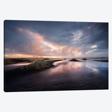 Black Sand Canvas Print #OXM3412} by David Martín Castán Canvas Wall Art