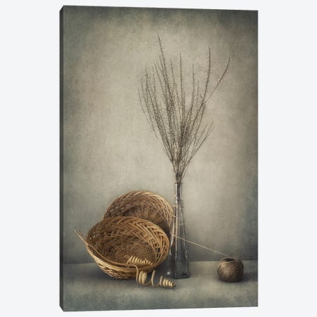 Almost Autumn... Canvas Print #OXM3426} by Dimitar Lazarov Canvas Artwork