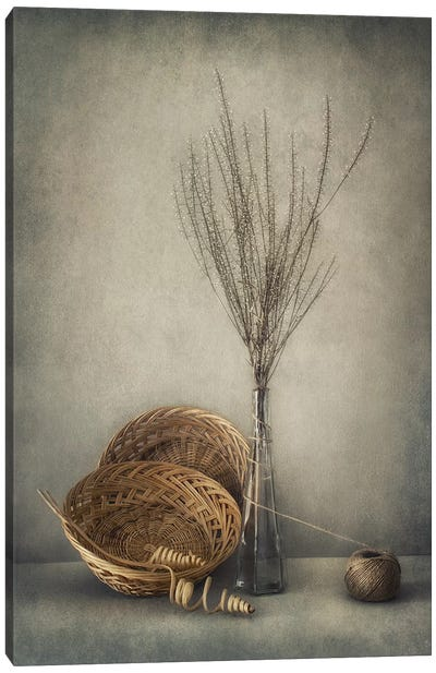Almost Autumn... Canvas Art Print