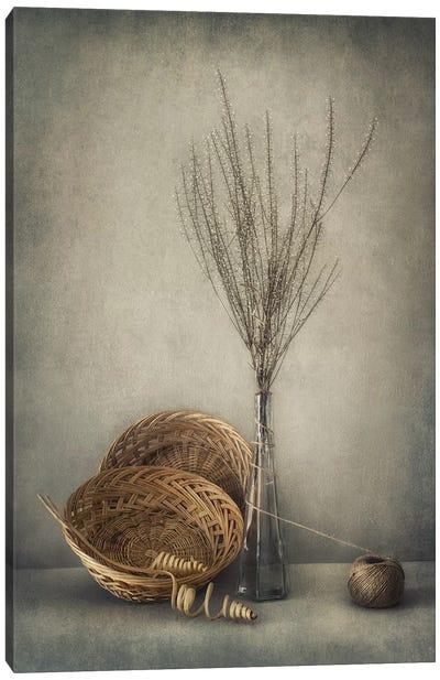 Almost Autumn... Canvas Art Print
