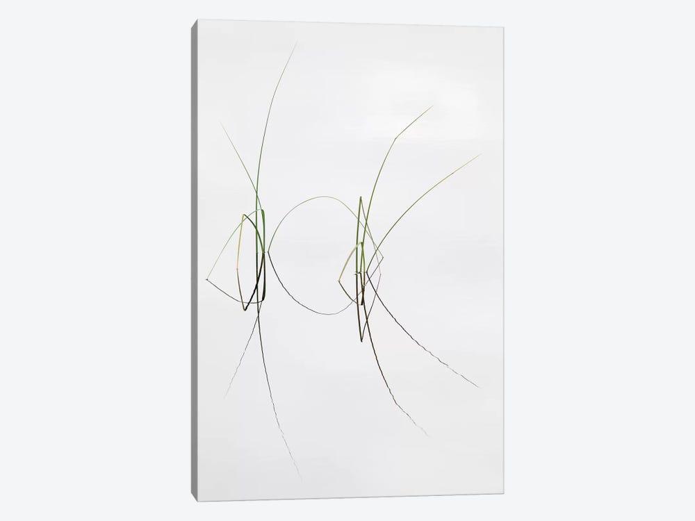 Zensation by Dirk Heckmann 1-piece Canvas Print