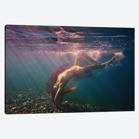 Dives In Beams Canvas Print #OXM3438} by Dmitry Laudin Canvas Wall Art