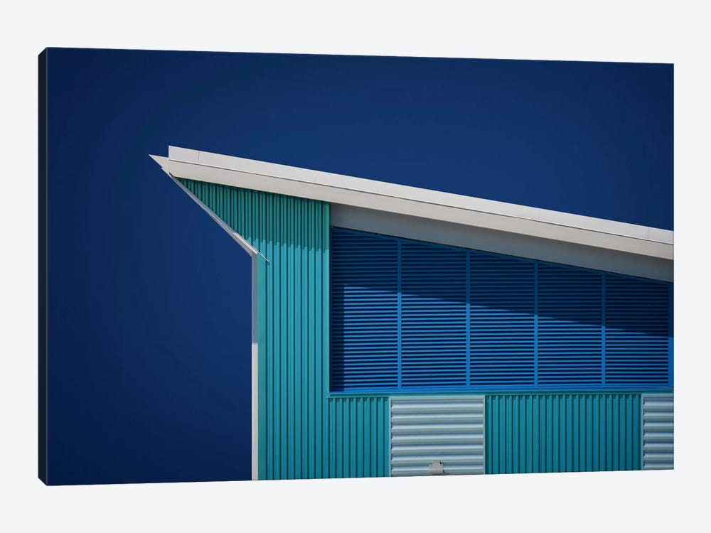 Rhapsody In Blue by Mathilde Guillemot 1-piece Canvas Art