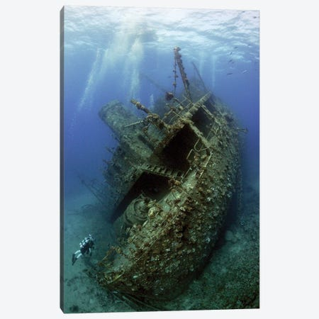 Giannis D. Wreck Canvas Print #OXM3450} by Dray Van Beeck Canvas Wall Art