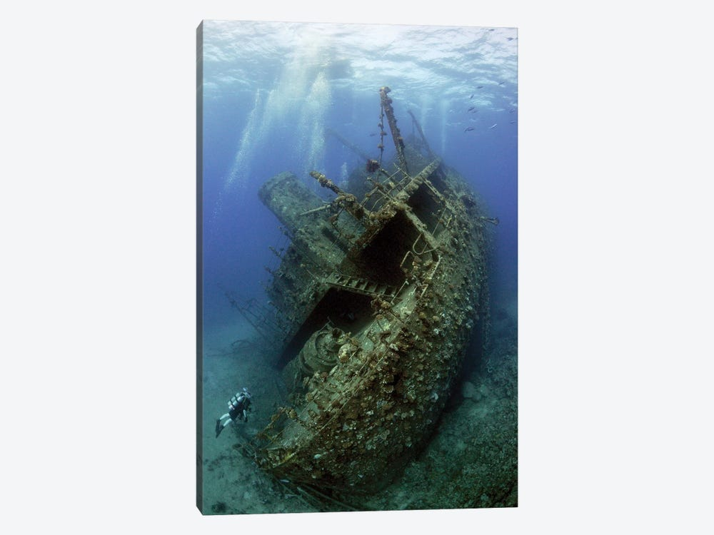 Giannis D. Wreck by Dray Van Beeck 1-piece Canvas Art Print