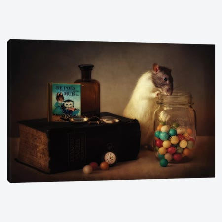 Gumballs Canvas Print #OXM3457} by Ellen van Deelen Canvas Print