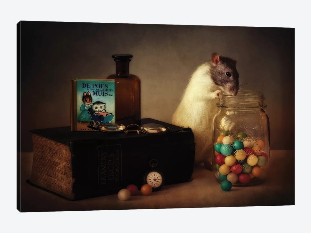 Gumballs by Ellen van Deelen 1-piece Canvas Wall Art