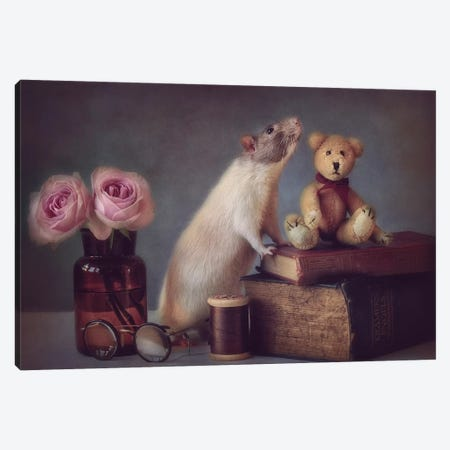 Snoozy And Friend Canvas Print #OXM3463} by Ellen van Deelen Canvas Art Print
