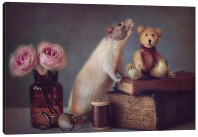 Snoozy And Friend Canvas Art Print