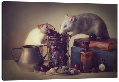 Snoozy And Jimmy Canvas Art Print