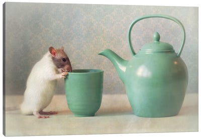 The Teapot Canvas Art Print
