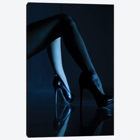 Blue Velvet Canvas Print #OXM3470} by Erik Schottstaedt Canvas Art