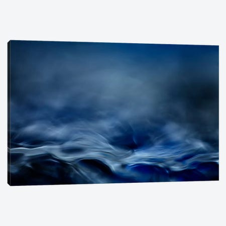 Blue Fantasy Canvas Print #OXM347} by Willy Marthinussen Canvas Wall Art