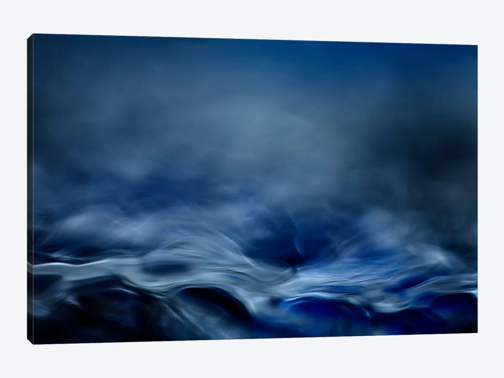 Blue Fantasy by Willy Marthinussen 1-piece Canvas Artwork