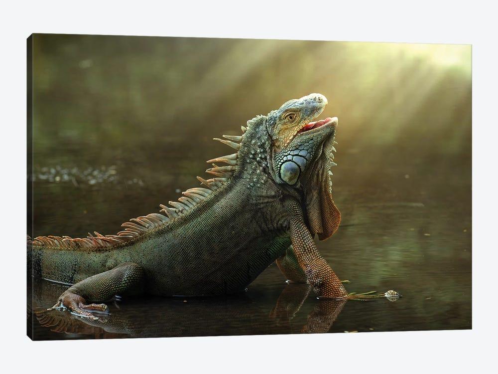 Morning Light by Fahmi Bhs 1-piece Canvas Art Print