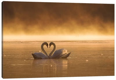 Lovers Canvas Art Print