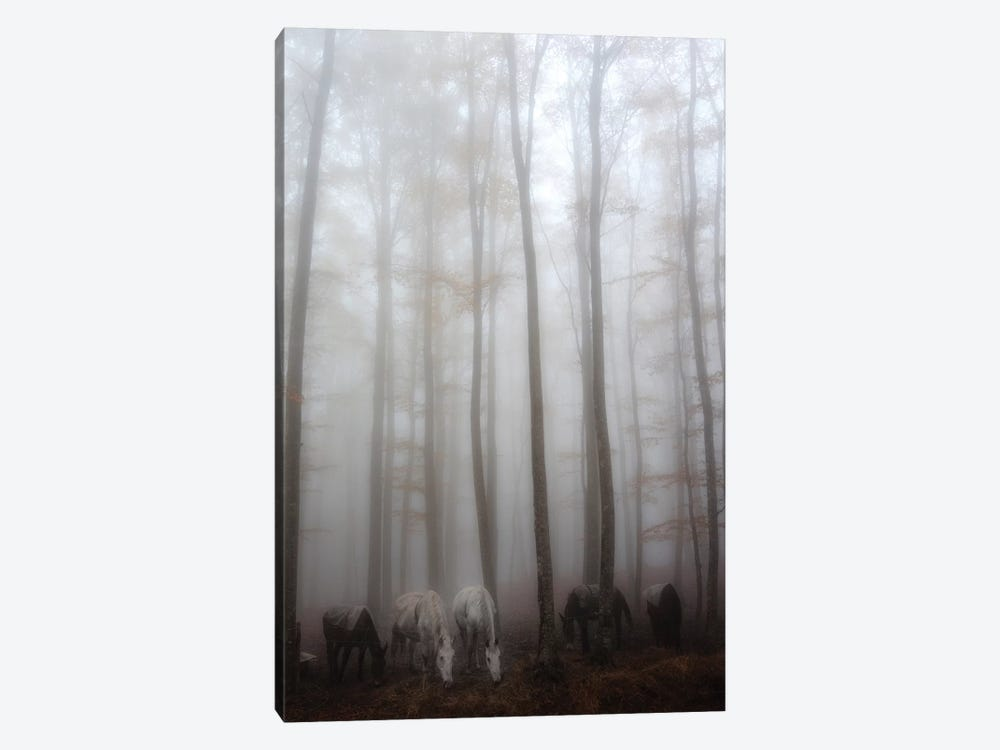 Fog 1-piece Canvas Print