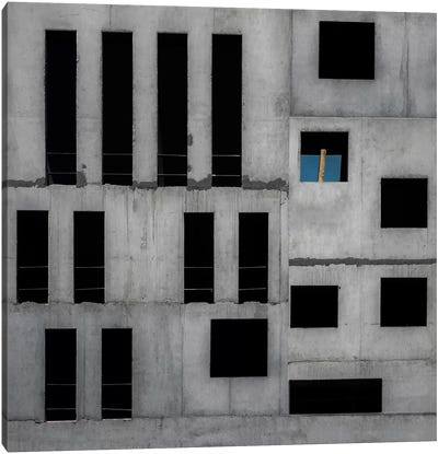 Isolation Cell Canvas Art Print