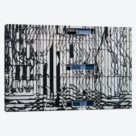 Structures Of Chaos Canvas Print #OXM3541} by Harry Verschelden Canvas Art