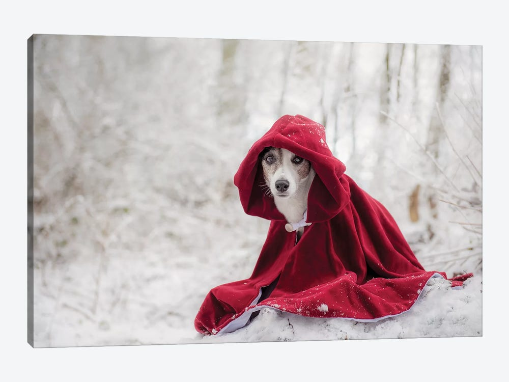 Little Red Riding Hood In Winter by Heike Willers 1-piece Canvas Print
